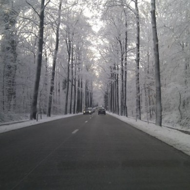 Jan 14, 2011 - Sometimes it's amazing driving to work. Snow storms can create amazing things... Art.
